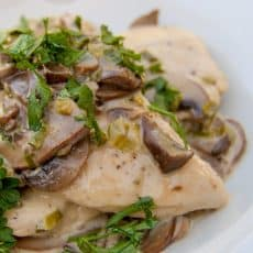 A white plate with chicken with mushroom white wine cream sauce