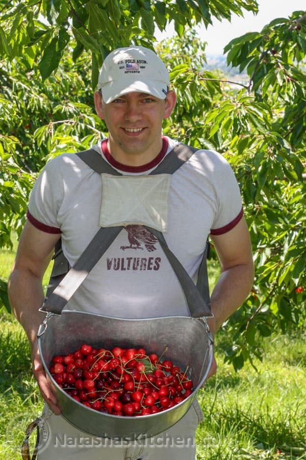 Picking Cherries-3