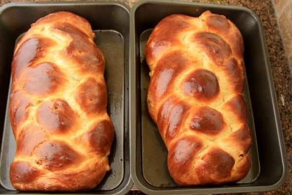 Two baking pans with baked Portuguese Easter bread