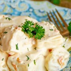 A plate with potatoes in alfredo sauce