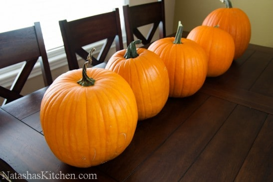 Five pumpkins sitting in a row on a dining table