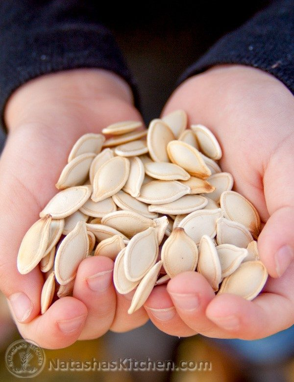 The perfect pumpkin shell pops right open, doesn't crumble and break the seed inside. It makes for an ideal roasted pumpkin seeds.