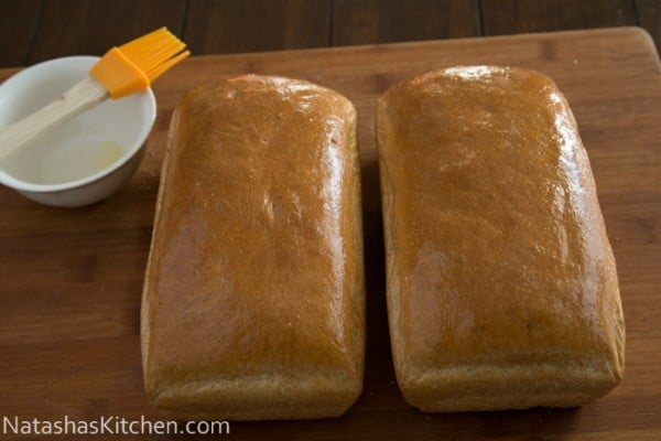 Rye and Whole Wheat Bread-35