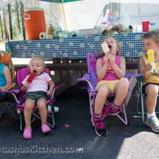 A group of young children sitting and eating ice cream with a picnic table behind them