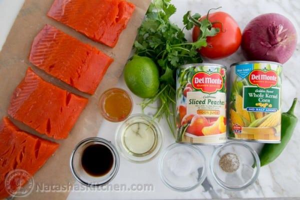 Teriyaki Glazed Salmon with Peach Salsa-2
