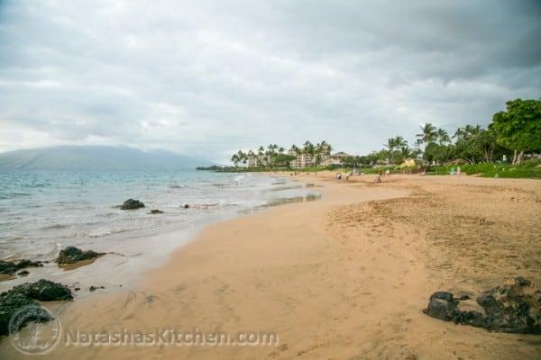 Maui 2014-4