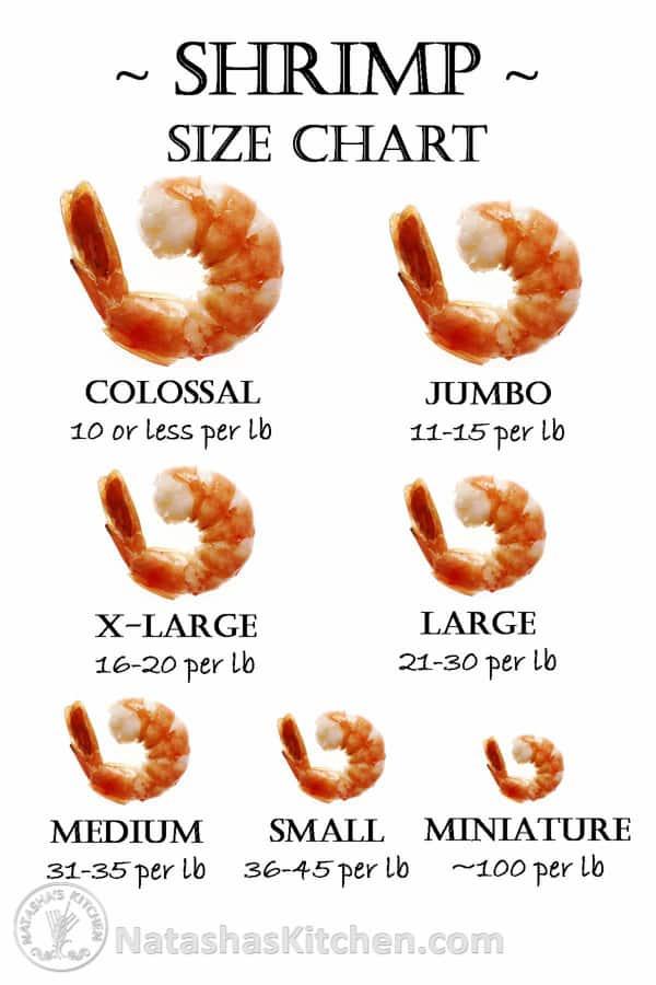 shrimp size chart