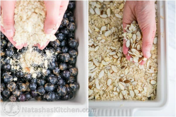 Blueberry Crumble Recipe-19