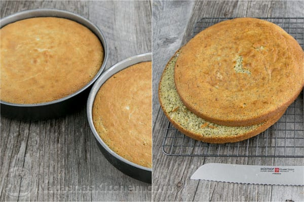 Poppy Seed Sour Cream Cake-11