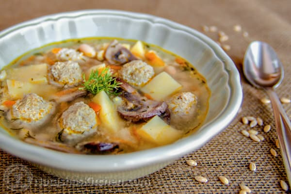Turkey Meatball Soup-9