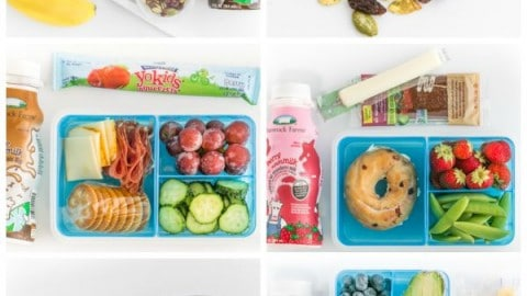 Practical school lunch ideas cold and hot school lunch forumfinder Gallery