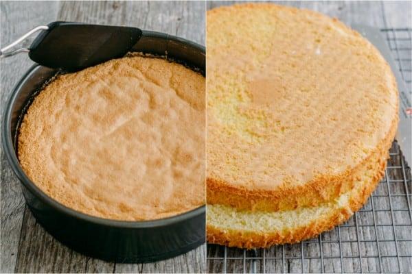 Charlotte Cake-11