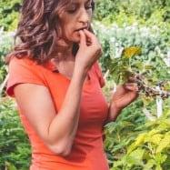 Vegetable Garden Tour Video - See how the master gardeners plant their garden | natashaskitchen.com
