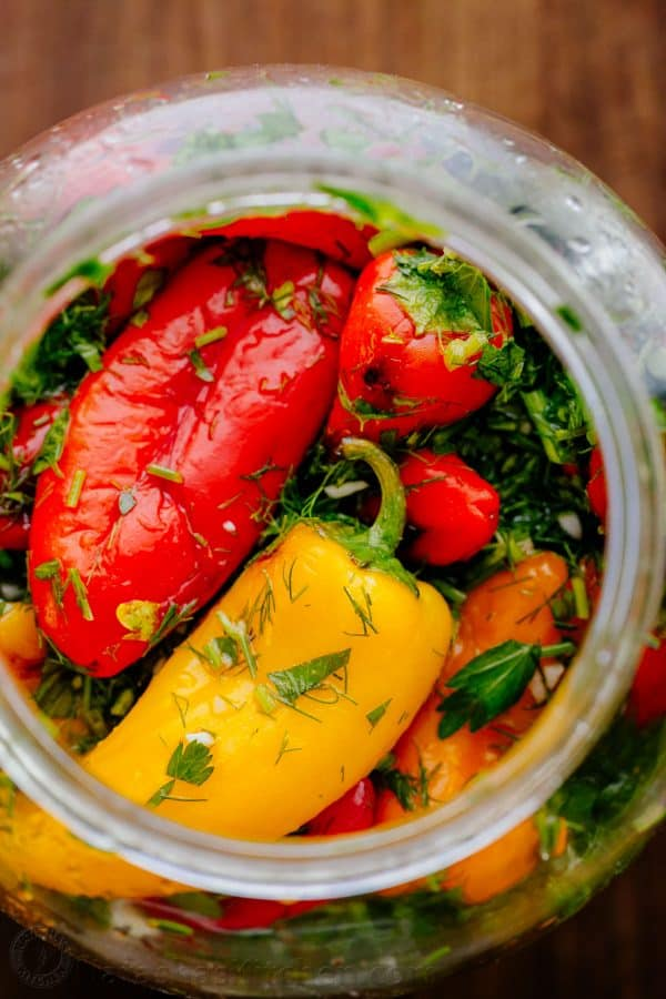 marinated-mini-bell-peppers-2