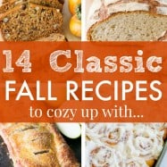 Fall Recipes that prove Fall is the best season for baking. Must-try Classic Fall Recipes! | natashaskitchen.com