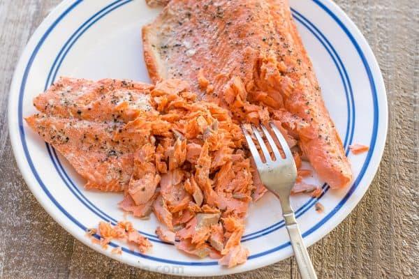 Easy Salmon Cake Recipes