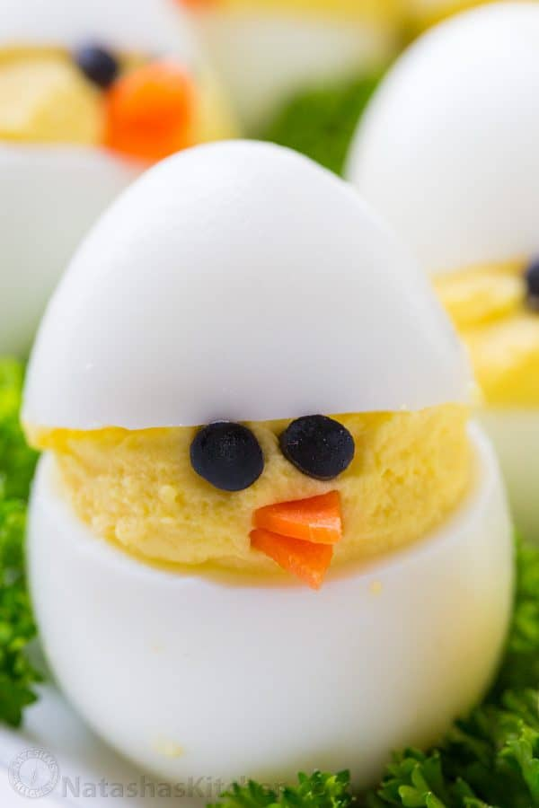 A close up of a chick made out of an egg