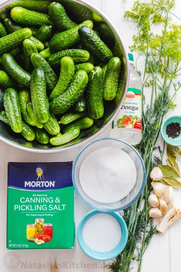 Ingredients for Canned Dill Pickle Recipe