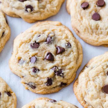 soft chocolate chip cookies on cookie sheet