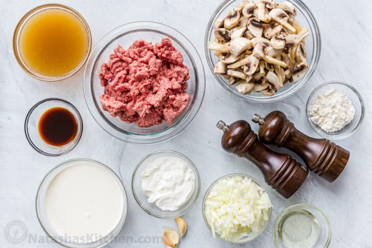 Ingredients for the Ground Beef Stroganoff