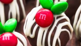 chocolate coconut balls with m&m candy